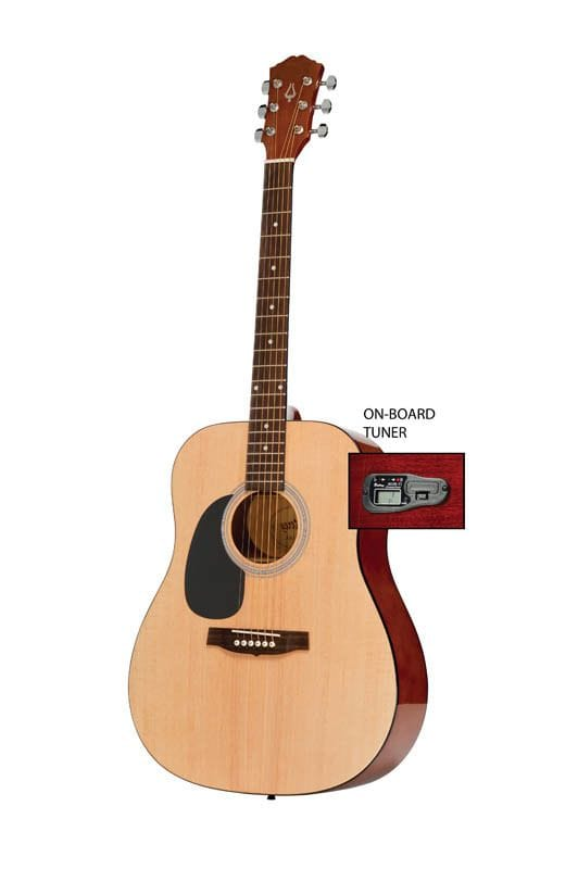 DREADNOUGHT SIZE GTR NATURAL L/HAND