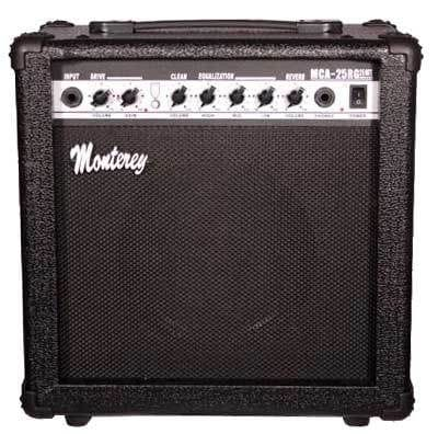 25 WATT GUITAR COMBO WITH REVERB