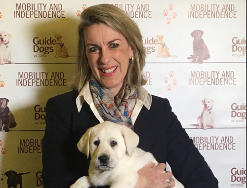 Guide Dog puppies in Parliament