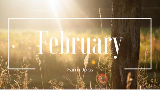 February Farm Jobs