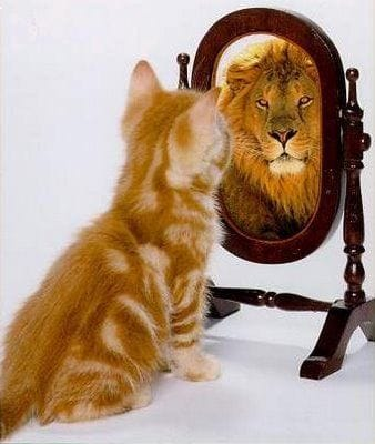 Building Greater Self-Awareness