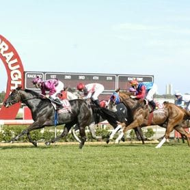 MAGIC MILLIONS DAY TWO SELLING STRONGER