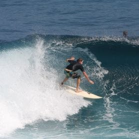 SURFERS CAPTURED BY ONLINE BUSINESS