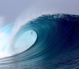 SURFSTITCH FLOAT GATHERS MOMENTUM