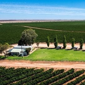 SEVEN FIELDS SELLS THREE VINEYARDS IN SOUTH AUSTRALIA