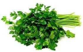 Herbs Italian Parsley bunch