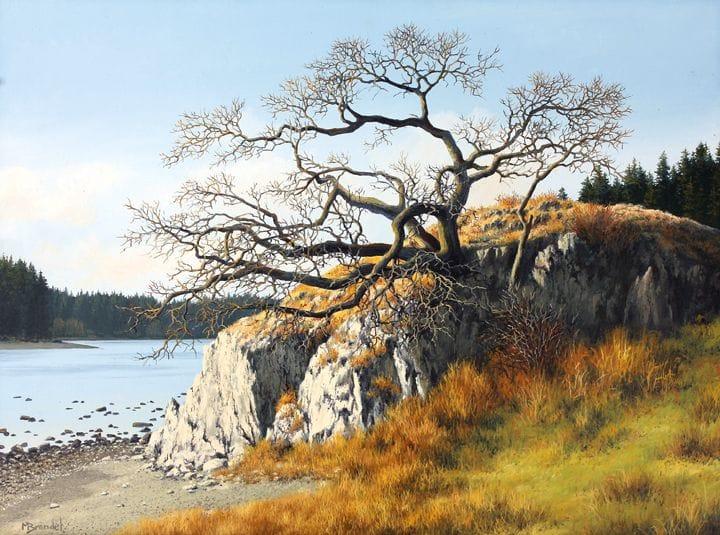 Glengarry Oak