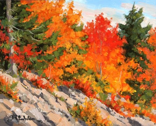 Fiery Leaves - Algonquin