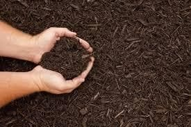 The Importance of Mulch