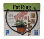 THE POT RING