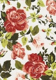 A4 Designer Recycled Paper 120gsm: Antique Rose (Red)