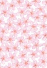 A4 Designer Metallic Paper 120gsm: Frangipani (Pink)