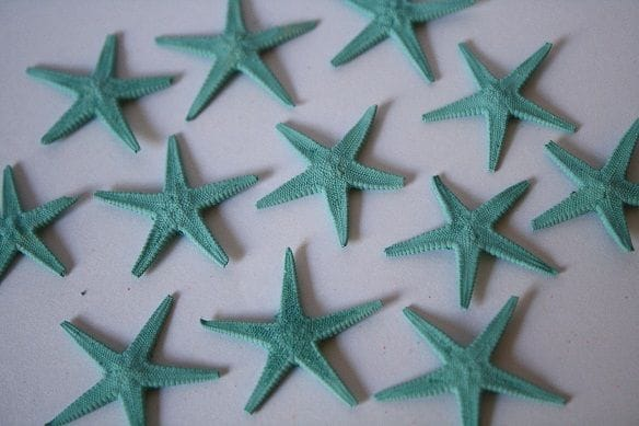 Baby Starfish | 100 Pack | Aqua
