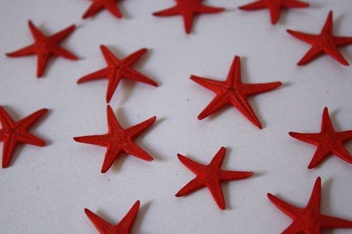 Baby Starfish | 100 Pack | Red