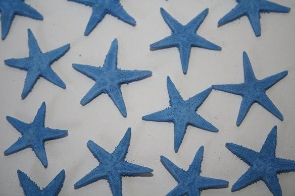 Baby Starfish | 100 Pack | Royal Blue