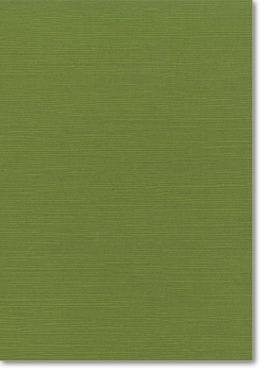 A4 Zsa Zsa Textured Card   Algae