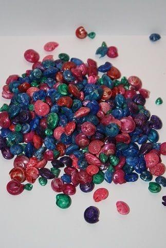 Shells | Umbonium Dyed Mix 200g