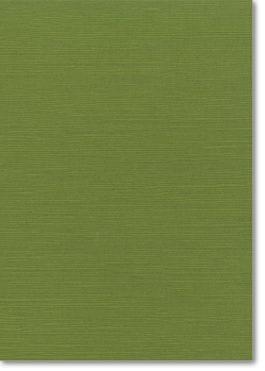 A4 Zsa Zsa Textured Card | Algae