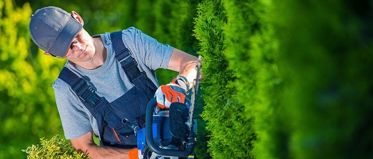 Staying on top of property maintenance