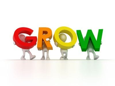What help do you need to help you grow your business?