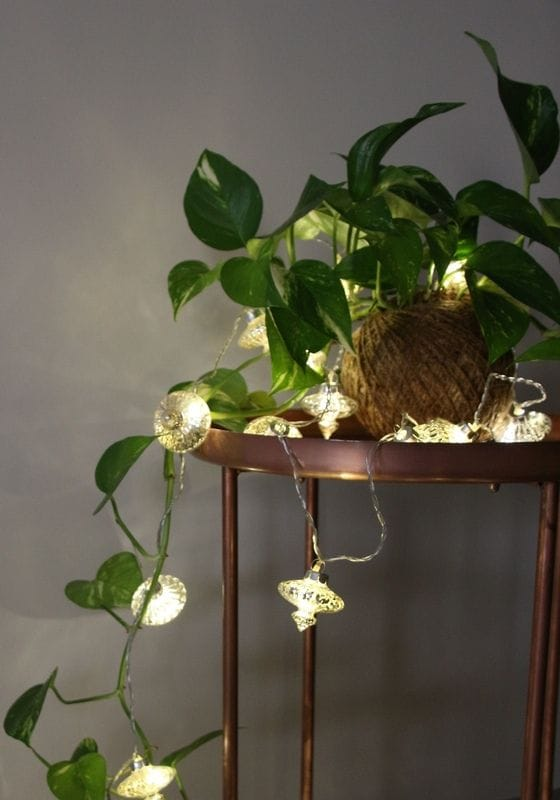 Electric Powered String Lights