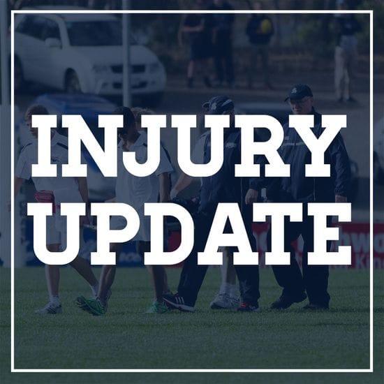 Injury Update - Round 17