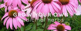 Grow Your Own Medicinal Herbs