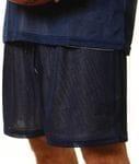 Adult Mini Mesh Basketball Short