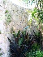 Eldorado Stone Mountain Ledge Sycamore
