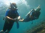 Andrew & Dive Buddy Simon